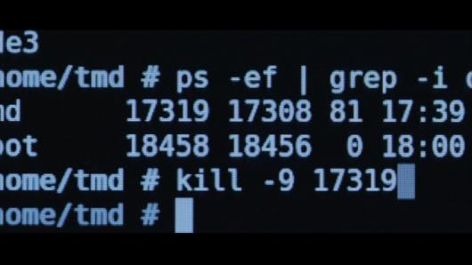 kill コマンドを打ち込むエドワード