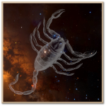 Scorpinus